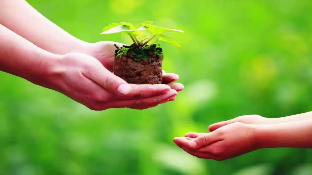 Phương pháp thai giáo theo đạo Phật: 4 điều mẹ nên làm ngay