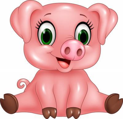 Lợn con hay hắt xì